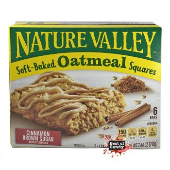 Nature Valley I Oatmeal Squares I 210g
