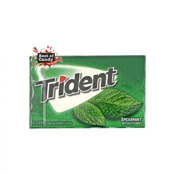 Trident | Spearmint Gum I 35g